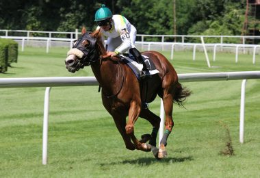 jockey-frank-hayes